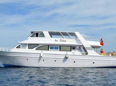 Hurghada Boat Charters – Sea Falkon