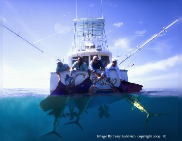 Buena Vista Sportfishing Resort