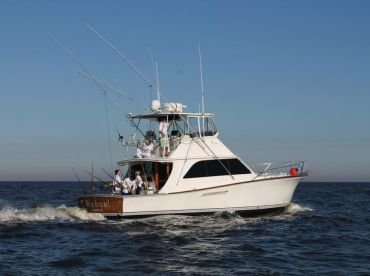 Charleston Fishing Charters – Wahoo