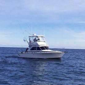 Heavy Hitter Sport Fishing LLC
