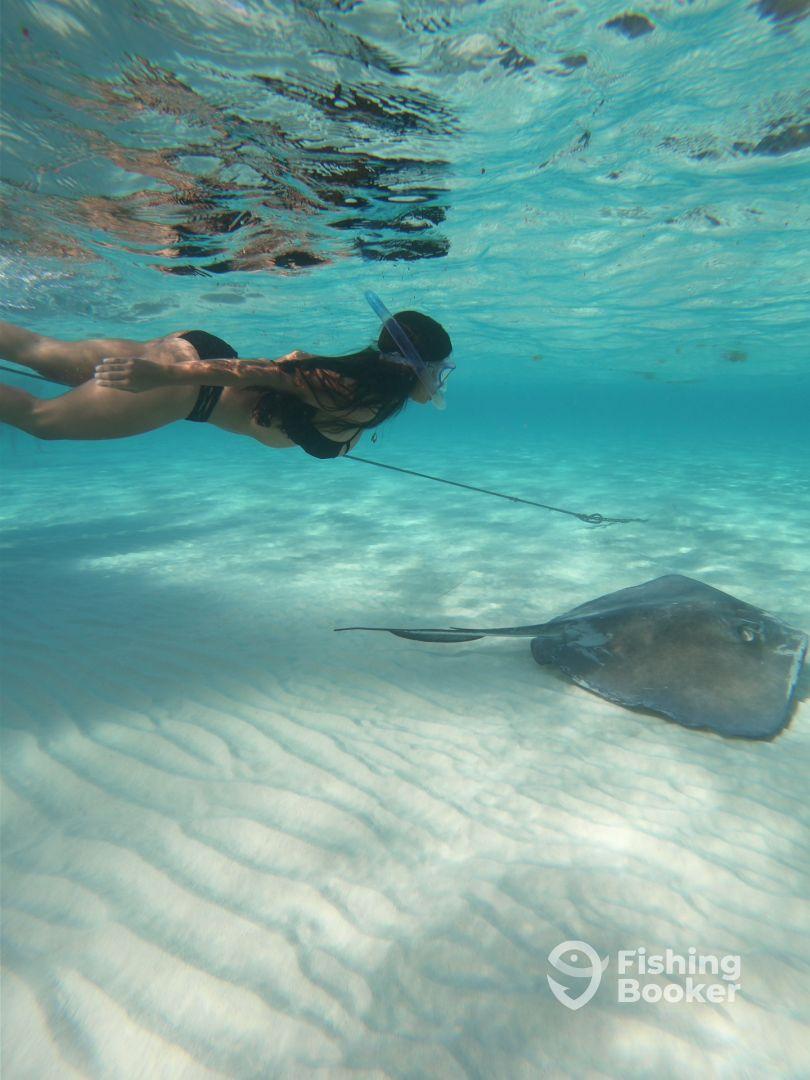 Swimming at Stingray City
