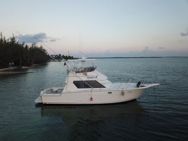 Infinity Private Charters