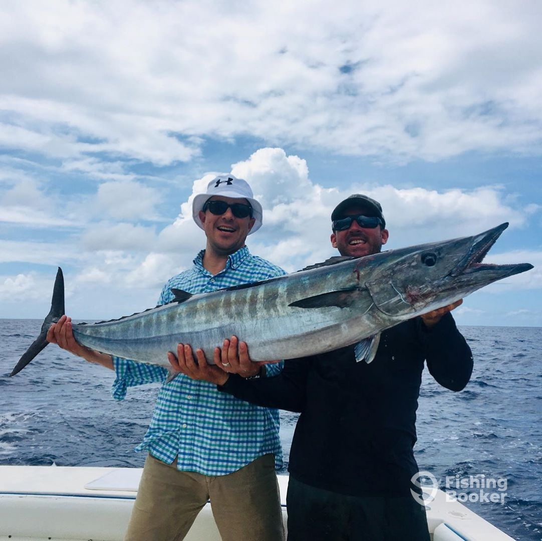 Ocean Surfari Fishing Charters
