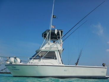 Elai Fishing Charter