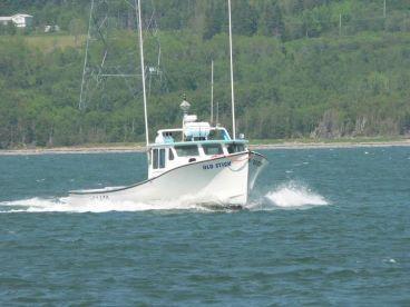 Anderson Strait Fisheries Ltd.