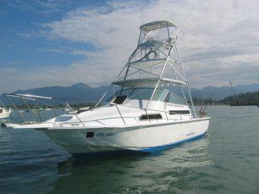 Bluefin Sportfishing - Bluefin III