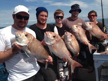 LegASea - Megabites Fishing Charter, Auckland