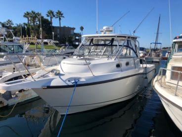 Reel Life Fishing Charters
