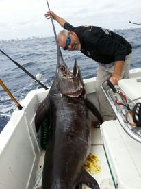 400 pound swordfish