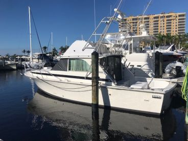 Crabby Charters - Deep Sea Fishing