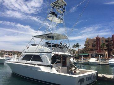 Cabo Sport Fishing – 60' Bertram