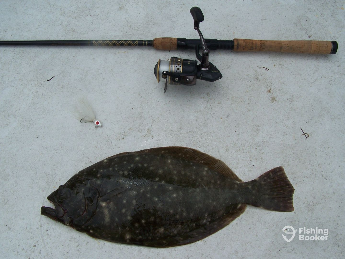 Southern Flounder Caught on a Jig