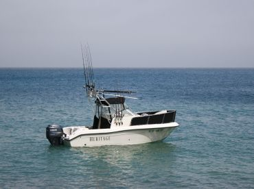 Reel To Reef Charters - Heritage
