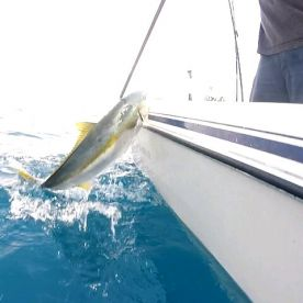 Ez Sportfishing