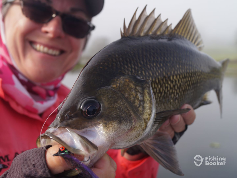 Northern Rivers Sportfishing - East