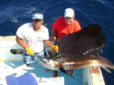 Nice sailfish pic, fishing from Andaz Hyatt Papagayo