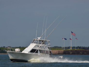 Charleston Fishing Charters – Teaser 2