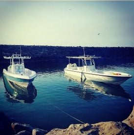 Alhouly Fishing Charter