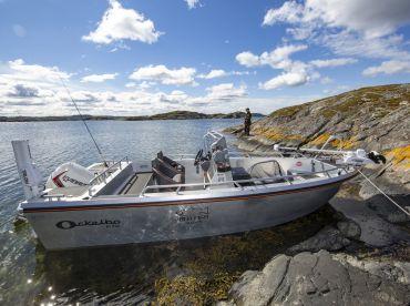 Wild Fish Sweden