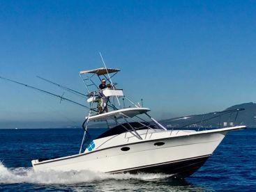 Michael Grey's Fishing Charters