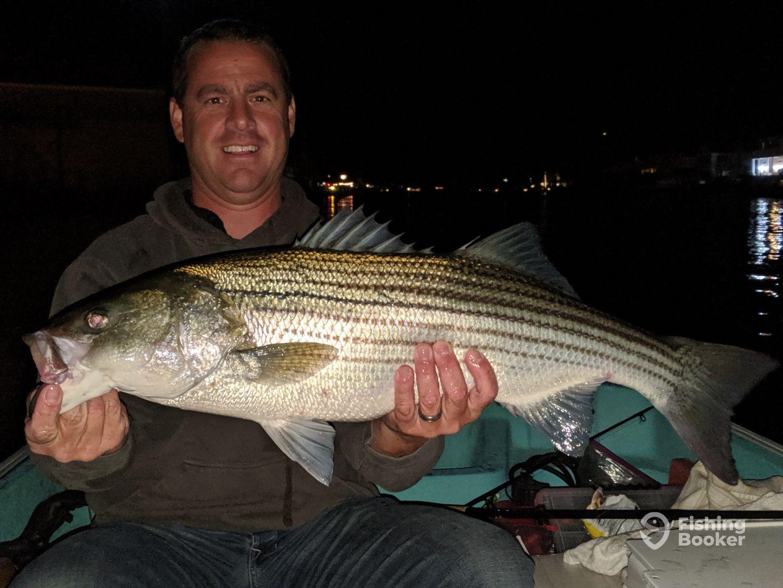 Night Time Bass
