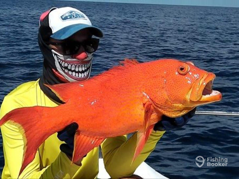 Рыбалка на сейшельских островах цены 2019