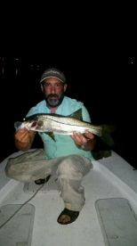 First night of snook season! 12:03am