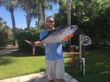 Spring black fin tuna!