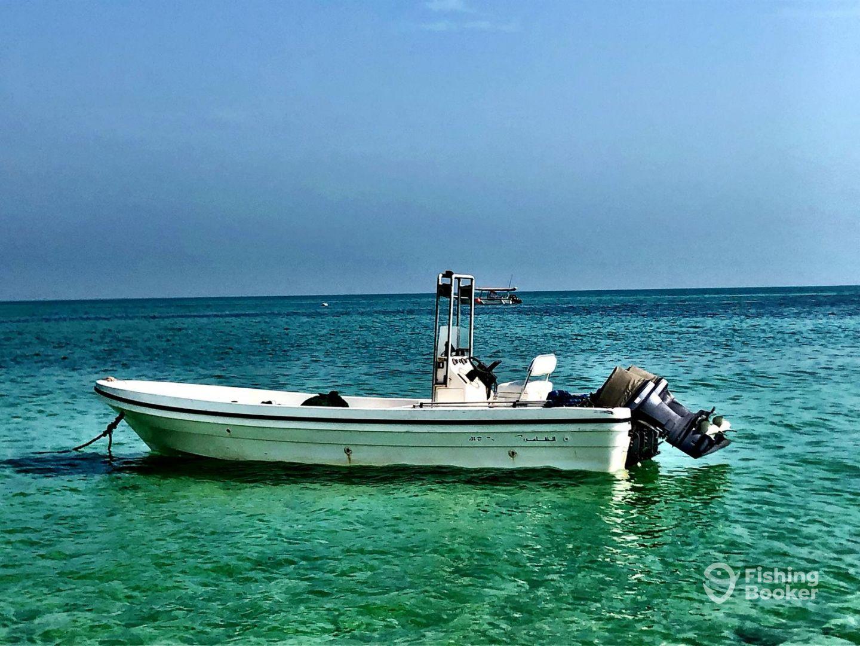 Qatar Fishing Trip