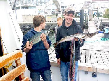 Azores Sportfishing II