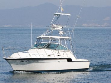 Hatteras 35ft. twin engines.