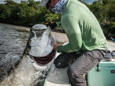 Chasing Silver Charters