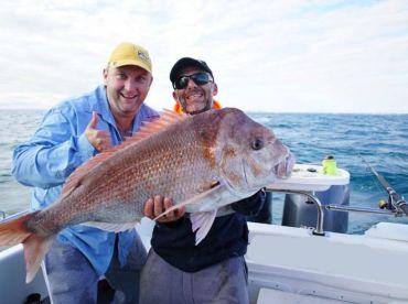 12.5 kg Port Phillip Snapper