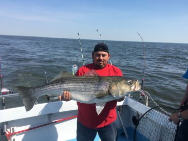 Chubby Chaser Charters