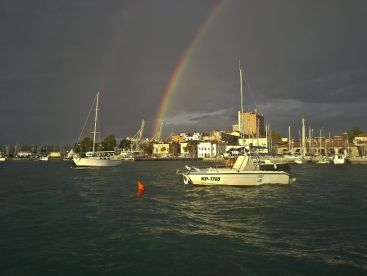 The Wolf under the rainbow in the background the town of Koper