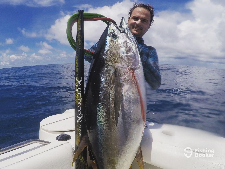 Fatty! Yellowfin Tuna