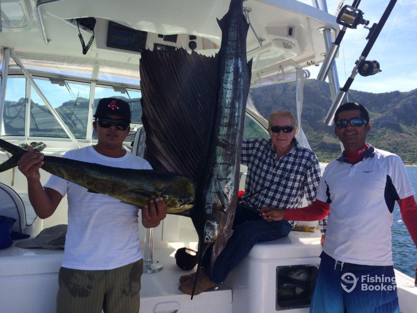 Mahi Mahi fish,  stripe and black marlin , sail fish throughout summer time.