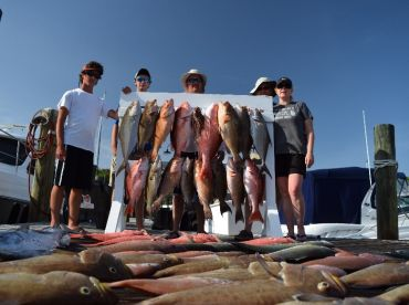 Red Snapper, Black Snapper, Scamp Grouper, Red Grouper, Almaco Jack, Lion Fish, Bonita