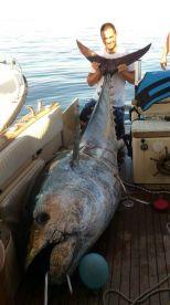 Abyss Big Game Fishing, Rovinj