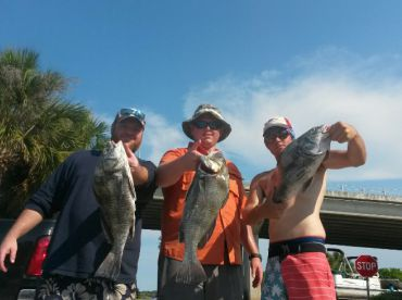 Daytona Beach Charters