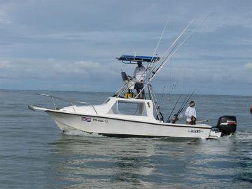 Allin Sportfishing - 28' Mako