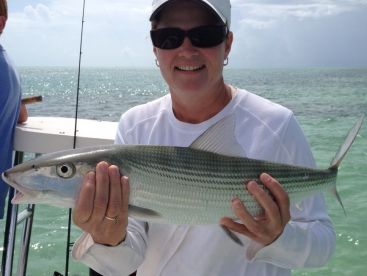 Big bonefish.