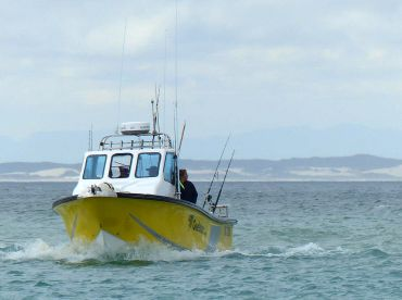 Agulhas Banks Fishing Expeditions, Struisbaai