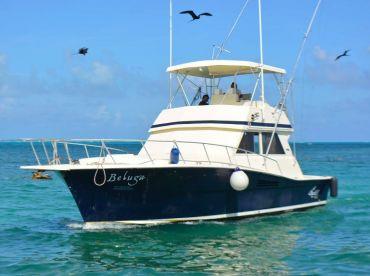Chac Chi Marina - 41ft Beluga
