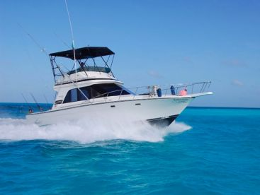 Chac Chi Marina - 38ft Happy Ours