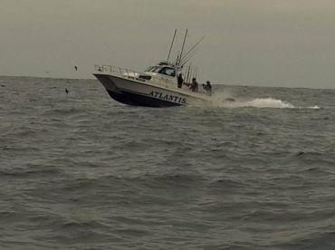 Piranha Group - Atlantis, Cape Town