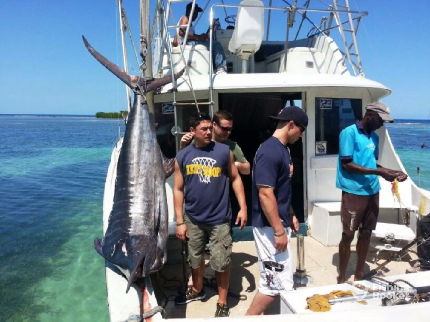 Fantasea dive sea world jamaica montego bay jamaica for Jamaica fishing charters