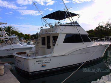 Captain Rick's - 42' Sakitumi, Playa Del Carmen