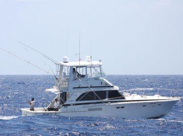 Captain Rick's - 46' Finatik, Playa Del Carmen