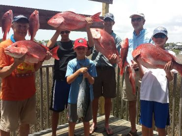 LOOK AT THOSE RED SNAPPERS